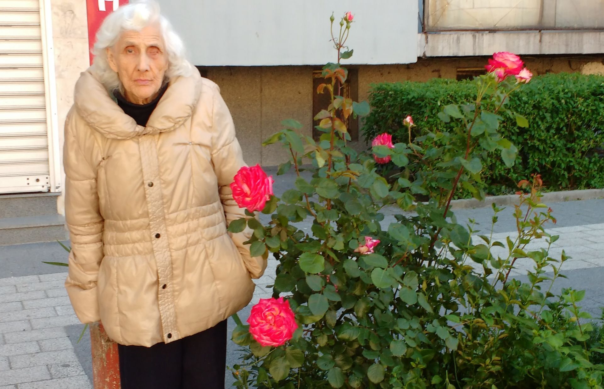 Нека помогнем на баба Гергина Бонекова
